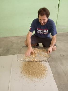 Il momento della calibratura e selezione di un campione di orzo